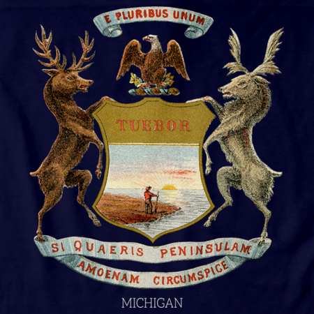 Vintage Michigan Flag