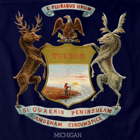 Vintage Michigan Flag